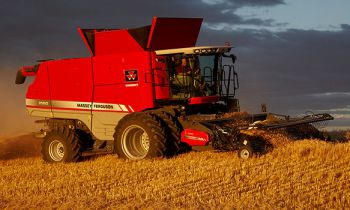 CroppedImage350210-masseyferguson-4200-13-combines-pick-up-heads.jpg