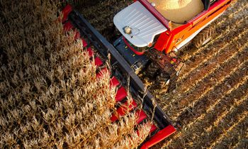 CroppedImage350210-masseyferguson-combines-corn-heads.jpg